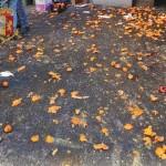 A Ivrea battaglia di arance in cortile per un carnevale fai da te