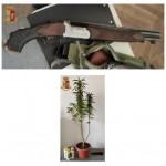 Arrestati a Ivrea per la detenzione di un fucile rubato