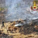Boschi in fiamme una persona denunciata dai Carabinieri per incendio doloso