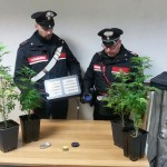 Controlli dei Carabinieri sei persone denunciate