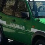 Da agriturismo a discarica intervengono i Carabinieri Forestali