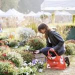 """Dal 23 al 25 ottobre la """"Tre Giorni per il Giardino"""" edizione autunno"""