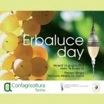 Domani Erbaluce Day a Torino
