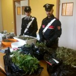Droga express intercettato dai carabinieri con 8 kg di marijuana