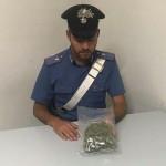 Due giovani denunciati per detenzione di droga ai fini di spaccio