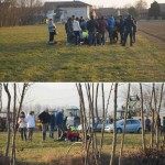 Due incidenti alla Festa di Sant'Antonio Abate 1