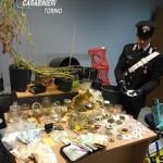 Giardiniere pusher coltivava droga bio in casa, arrestato dai carabinieri