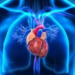 I Weekend della Salute sulla stenosi aortica in piazza a Torino