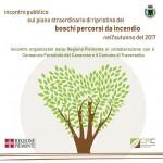 Incendi boschivi incontri su interventi e prevenzione a Traversella e Locana