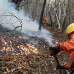 Incendi la Città metropolitana di Torino apre la sala operativa di protezione civile