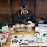 Miniserra nell'armadio per la marijuana