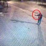 'Ndrangheta maxi operazione in Calabria, Lombardia e Piemonte, 11 arresti 1