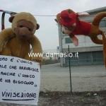 No alla vivisezione presidio pacifista alla Rbm