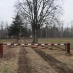 No definitivo della Provincia al progetto di fotovoltaico nella riserva della Vauda