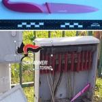 Omicidio Leo rilevata traccia Dna della vittima sul coltello sequestrato