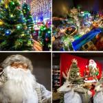 Peraga Garden Center 70.000 volte Natale