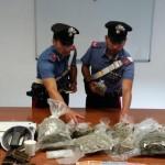 Pony express della droga arrestato con mezzo chilo di marijuana