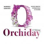Sabato e domenica da Peraga l'ORCHIDAY, la Mostra Mercato Internazionale di Orchidee 1