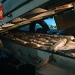 Segnali di fumo la Polizia sequestra 135 kg di marijuana