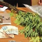 Spaccio di droga, due arresti e sequestro di 2,2 kg di Amnèsia