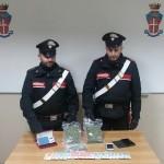 Spaccio di marijuana a giovani studenti di Ivrea, arrestato