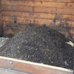 Un anno di compostaggio comune 1