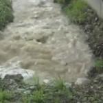 Vento, forte pioggia e grandine in Canavese